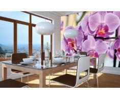 Great Art Poster Fiori Murale Decorazione Orchidee Natura Fiore di Falenopsis Piante di Orchis Botanica Primavera Relax Benessere Spa - Fotomurales Decorazione da Parete Immagine by (140 x 100 cm)
