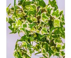 Edera artificiale, 230 foglie, su stelo, verde-bianco, 30 cm -Edera decorativa / Pianta rampicante - artplants