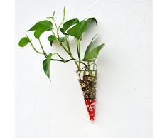 Cono Vaso Vetro Da Parete Idroponico Fiore Decorazione Feste Casa Giardino