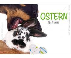 '3 pezzi witzige A6 animale Cartoline Cartoline - Carta Slot Easter Bunny Coniglio e cane Pasqua cade in.