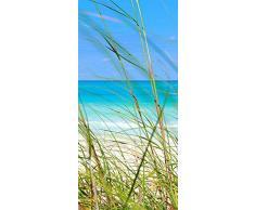 murando Autoadesiva carta da parati per porte XL 80x210 cm Pennelo per porte Poster Adesivo Quadro Design Natura Blu c-B-0221-a-d
