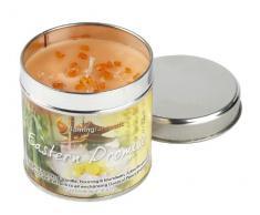 Peeled Orange essenza di Pasqua lusso candela profumata