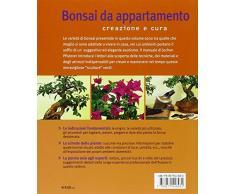 Bonsai da appartamento. Creazione e cura