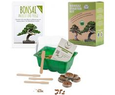 Bonsai Kit incl. eBook GRATUITO - Starter Set con mini serra, semi e suolo - idea regalo sostenibile per gli amanti delle piante (Semi: Olivo + Pino Australiano)