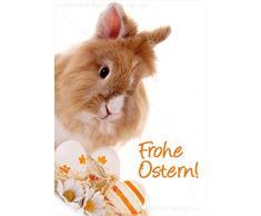 """'3 pezzi Schöne A6 cartoline animali cartoline Oster Coniglio Lepre buon Pasqua scheda scheda. """""""