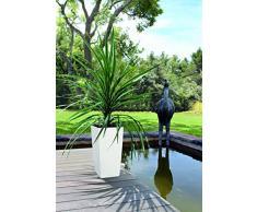Lechuza Cubico Color 40 Vaso in Resina per Piante Set Completo - Bianco opaco