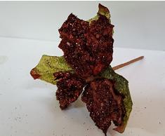 Set 12 pezzi fiore pick stella con corallini , x applicazione albero di NATALE, segnaposto tavolo, panettone. (AMON850) (marrone)