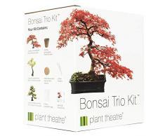 Plant Theatre - Bonsai Trio, Kit per la coltivazione di 3 bonsai