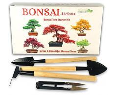 Kit per la Coltivazione di Un Albero Bonsai, mini kit di attrezzi per bonsai $ 7,99 incluso., con 5 Specie di Semi da Coltivare, Idea Regalo per Principianti
