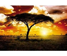 Africa - Tramonto del Sole nella Savana, Acacia Poster Stampa Geante XXL (120 x 80cm)