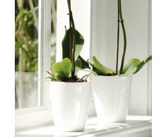 Elho - 315001 - Brussels Diamond, Vaso per orchidee, colore: Bianco, altezza: ca. 13 cm