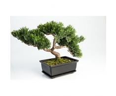 Cedro bonsai artificiale con 120 rametti, in vaso, 25 cm - Bonsai in vaso / Cedro in vaso - artplants