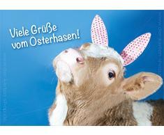 """'3 pezzi Schöne A6 cartoline animali cartoline scheda Pasqua Oster scheda di vitello mucca OSTERHASE molti grüße vom coniglietti. """""""