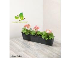 Cassetta da giardino in polyrattan, incl. agganci e sistema per innaffio,antracite, 80 x 19 x 18 cm