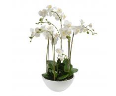 Emerald Orchidea Artificiale Bianca 80 cm 20.335C