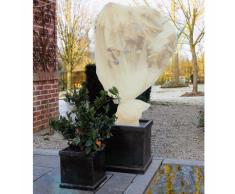 Nature Copertura velo protezione antigelo per piante 2 x 10 m 6030095