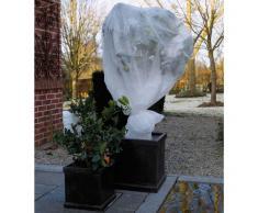 Nature Copertura velo protezione antigelo per piante 4 x 6 m 6030117