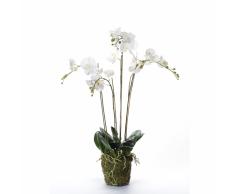 Emerald Orchidea Artificiale con Muschio Bianca 90 cm 20.355
