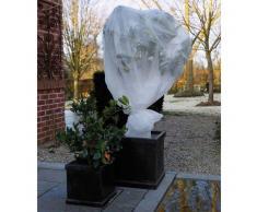 Nature Copertura velo protezione antigelo per piante 2 x 10 m 6030118