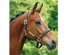 Plaque de cheval avec gravure - pour licol, Mors, Selle