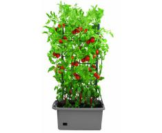 Bio Green GRBX-A Cultibac Potager Carré Anthracite 40 L 75 x 35 x 140 cm