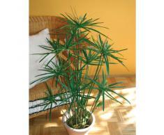 Cyperus Papyrus artificiel en pot, vert, 105 cm - Arbuste artificiel / Papyrus artificiel - artplants