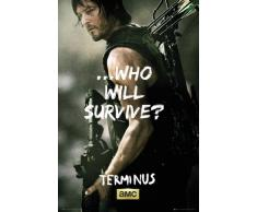 Poster The Walking Dead - Daryl Survive - affiche à prix abordable, poster XXL