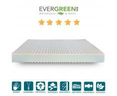 Evergreenweb KIT MEMORY MARE EASY PLUS 6: Materasso Memory, Rete a doghe in ferro e Cuscino memory
