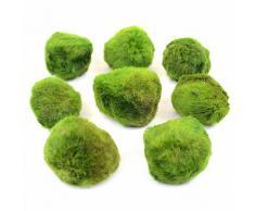 """Set di piante per acquario Zooplants """"Palline di muschio"""" - 8 palline"""