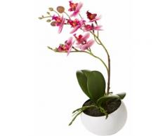Pianta artificiale Orchidea in vaso (Fucsia) - bpc living