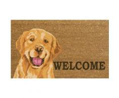 Zerbino : Welcome Labrador