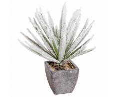 Vasetto con pianta grassa artificiale effetto brinato