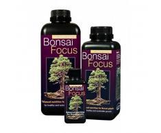 Growth Technology Bonsai Focus 300ml - Growth Technology