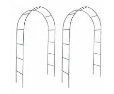 vidaXL Arco da Giardino 2 pz per Piante Rampicanti
