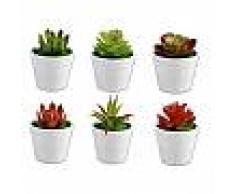 Piantina grassa artificiale 6pz con vaso pianta succulente arredamento casa