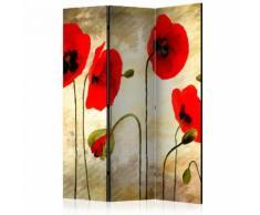 Paravento 3 Pannelli - Golden Field Of Poppies 135x172cm Erroi...