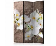 Paravento 3 Pannelli - Impeccability Of The Orchid 135x172cm Erroi...