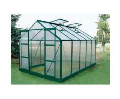 Serra da giardino in policarbonato da 9 m² COROLLE II con base - verde