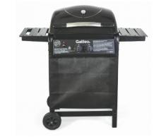 Barbecue A Gas Gpl 2 Bruciatori Soriani Gastone