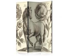 Paravento 3 Pannelli - Horse 135x172cm Erroi
