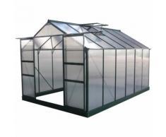 Serra da giardino in policarbonato DAHLIA Verde Abete 9.24 m²