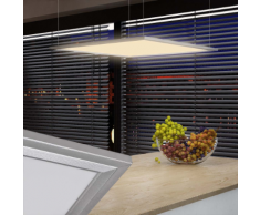 vidaXL Pannello a LED Luce da soffitto 60 x cm 40 W bianco caldo