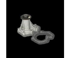 SKF Pompa Acqua RENAULT VKPC 86205 7701463014,7701467915
