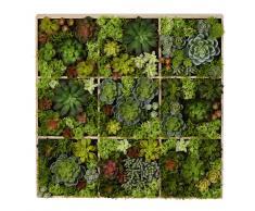Decorazione da parete piante artificiali, 17x70 cm
