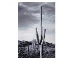 Quadro foto in plexiglas 80x120 cm ARIZONA
