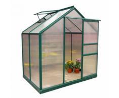 Evergreen Serra in alluminio 190x252xh201cm per piante fiori ortaggi giardino G1001F-C
