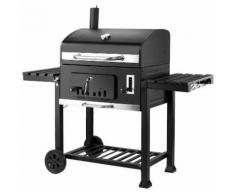 Barbecue a carbonella con camino - Q.BO