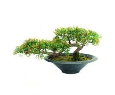 Euro Palms 82600113 - Pianta artificiale, Cedro bonsai, 40 cm