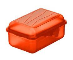 Rotho 1718900096 Funbox Contenitore per merenda e Pane, Privo di Bisfenolo A e Sostanze nocive, Prodotto in Svizzera, Plastica, Papaya Rot, 0.4 l (12.5 x 9 x 5.8 cm LxBxH)