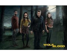 GB occhio Wolfblood-Sangue di lupo Stagione 3 Fusioni Maxi poster, multi-colore